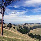 Strzelecki Ranges, Gippsland, Victoria, Australia. by johnrf