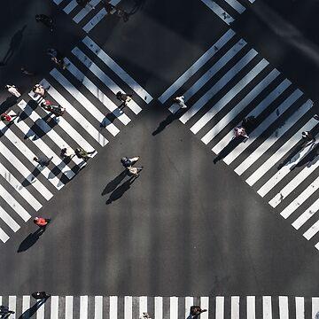 Aerial view birds eye view people crossings  by VinyLab