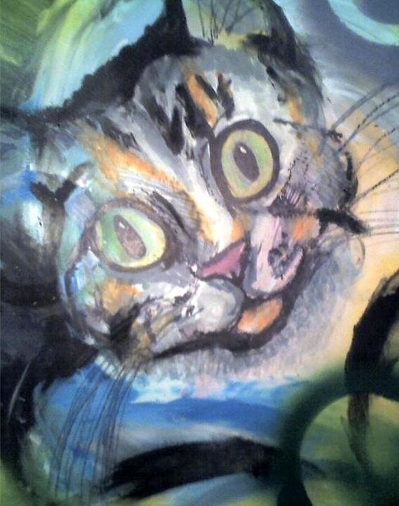 Cat by jamesvictor