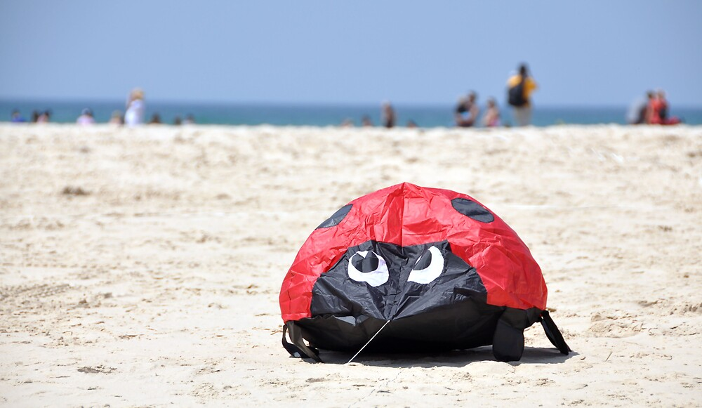 Ladybirds day at the Beach by Booba123