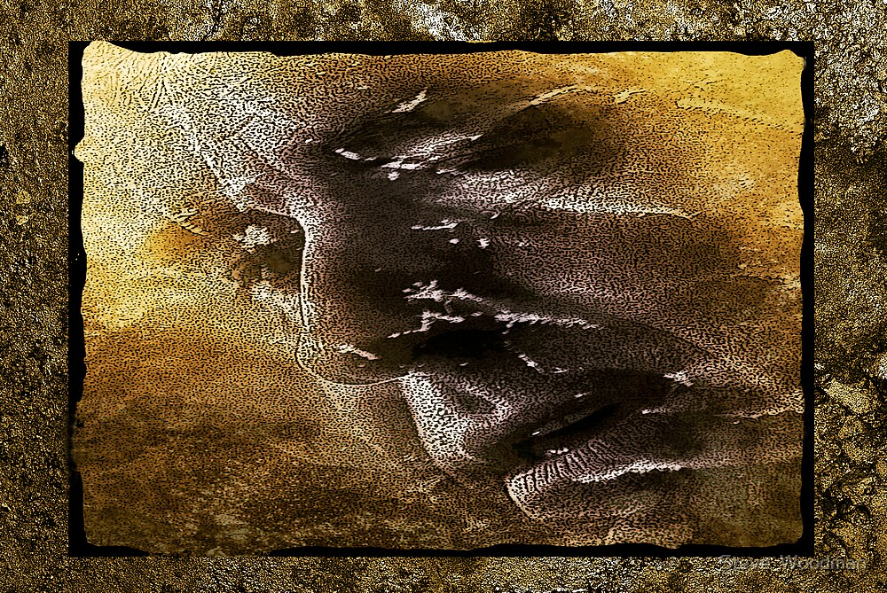 Pensive slate by Steve  Woodman