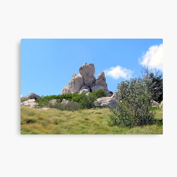 HEART OF THE MOUNTAIN Canvas Print