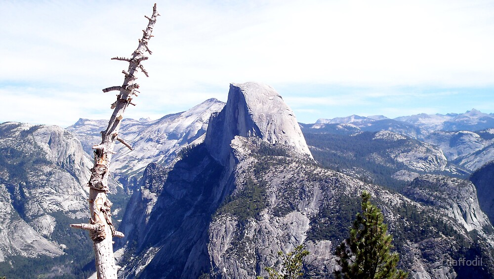 Glorious Half Dome by daffodil