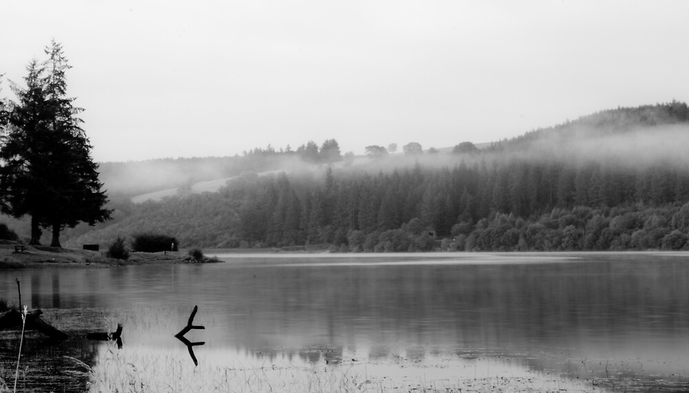 Llywn Onn Resevoir - Misty by Greg Roberts