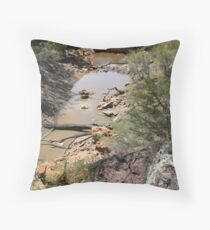 Drought and devistation Throw Pillow