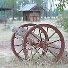Rustic transportation by columboola