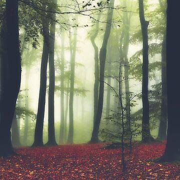 Fall haze by DyrkWyst