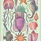 Marine Kreaturen V von Vlad Stankovic