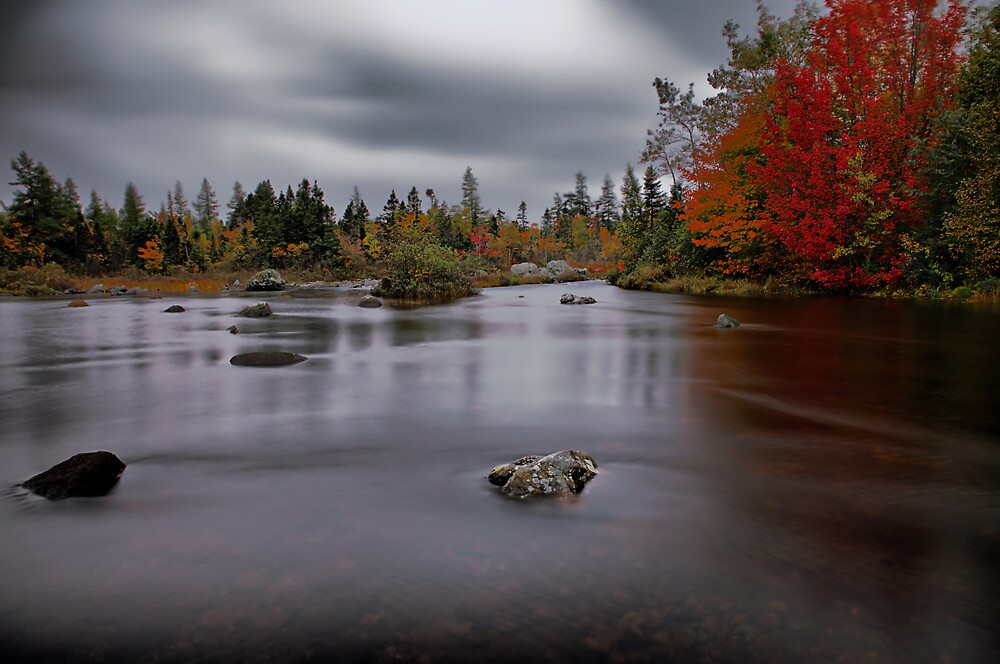 """""""A River Runs Through It"""" by Spencer Dove"""