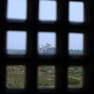 A Prisoners view of the Taj Mahal by John Dalkin