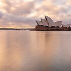 Morning Sydney by Peter Hocking