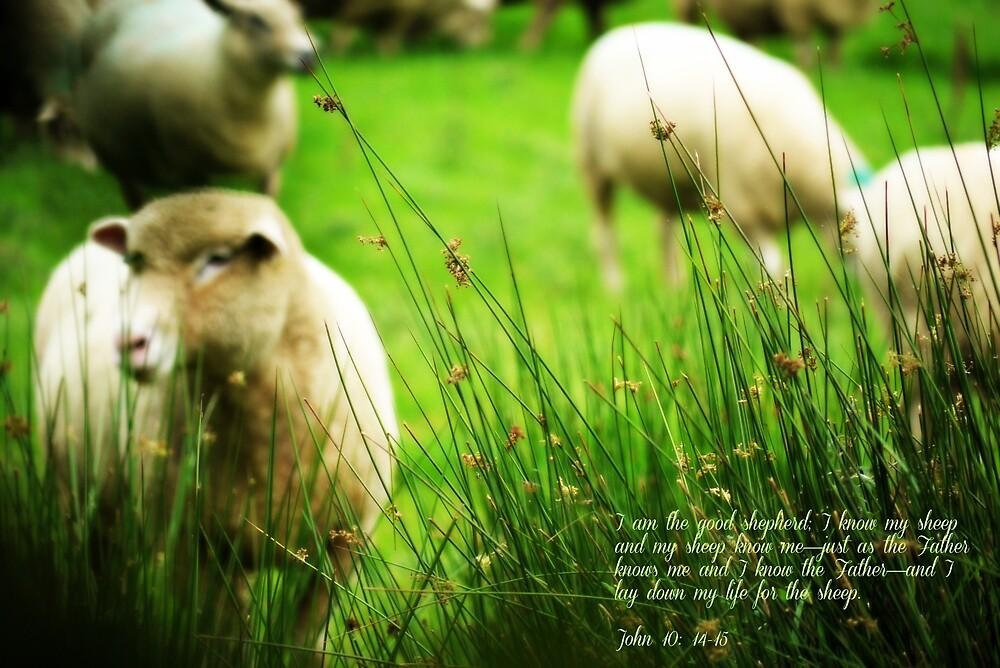 Good Shepherd by Ms-Bexy
