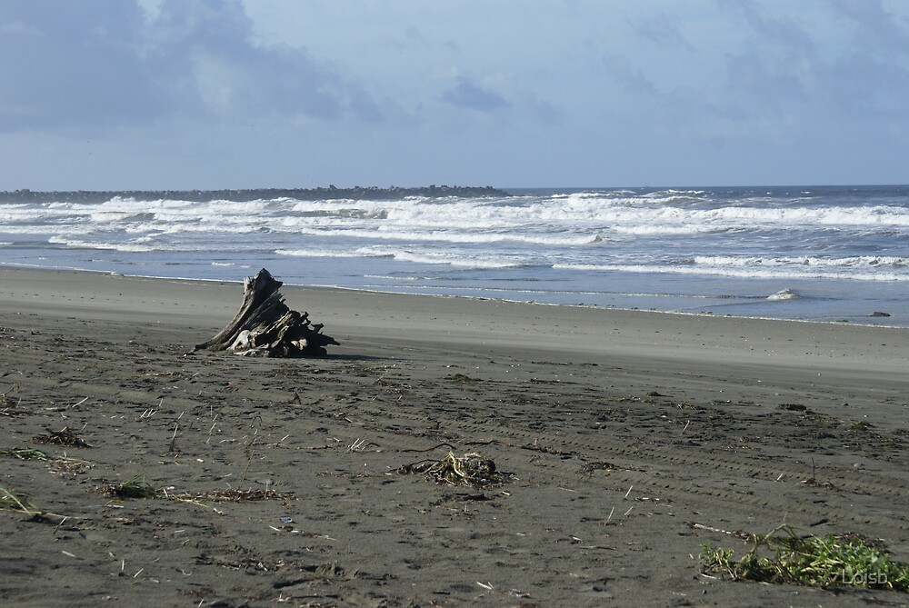 Ocean Shores by Loisb