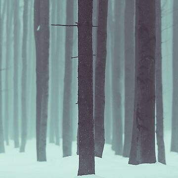 Frozen kingdom by Hudolin