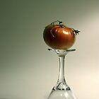 Tomato Martini by murrstevens