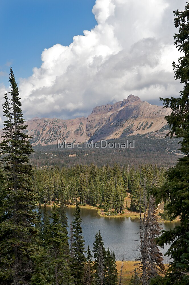 Mountain Lake by Marc McDonald