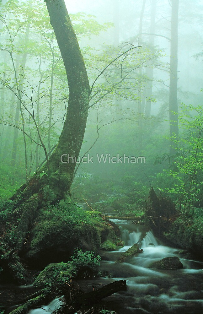 TEACH ME TO WHISPER by Chuck Wickham