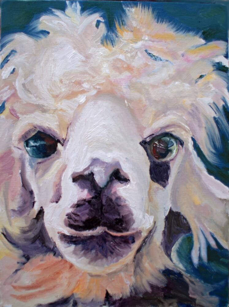 Llama 2 by Phyllis Dixon