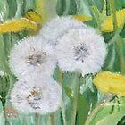 Flowers (dandelions) by MariaSibireva