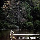 Thirteen Mile Woods Poster by Wayne King