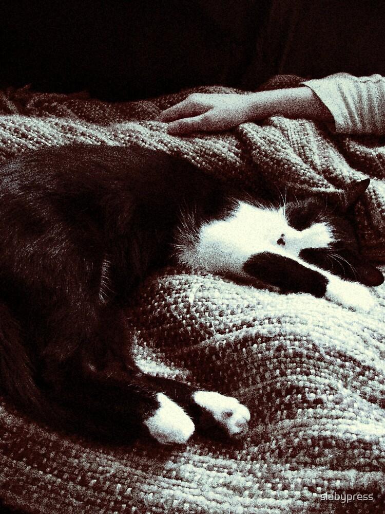 A Cat by slabypress