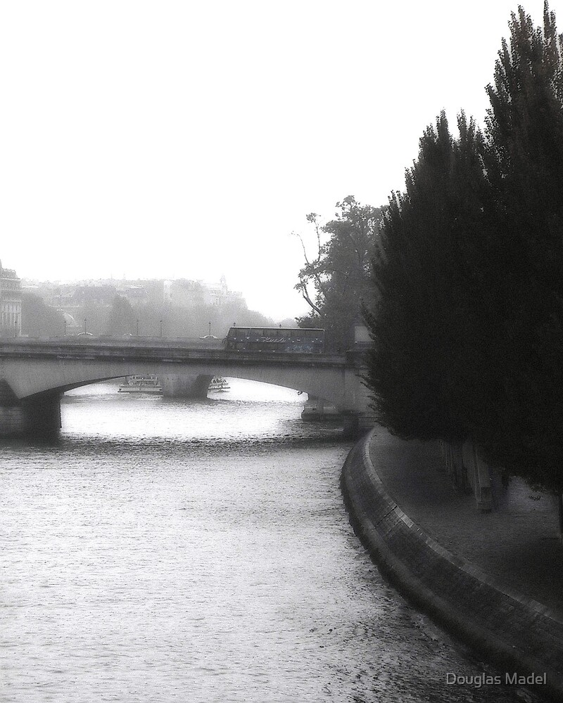 trees on the seine by Douglas Madel