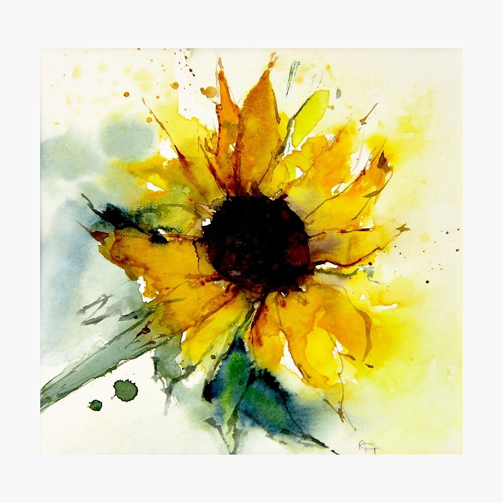 Sonnenblume Fotodruck