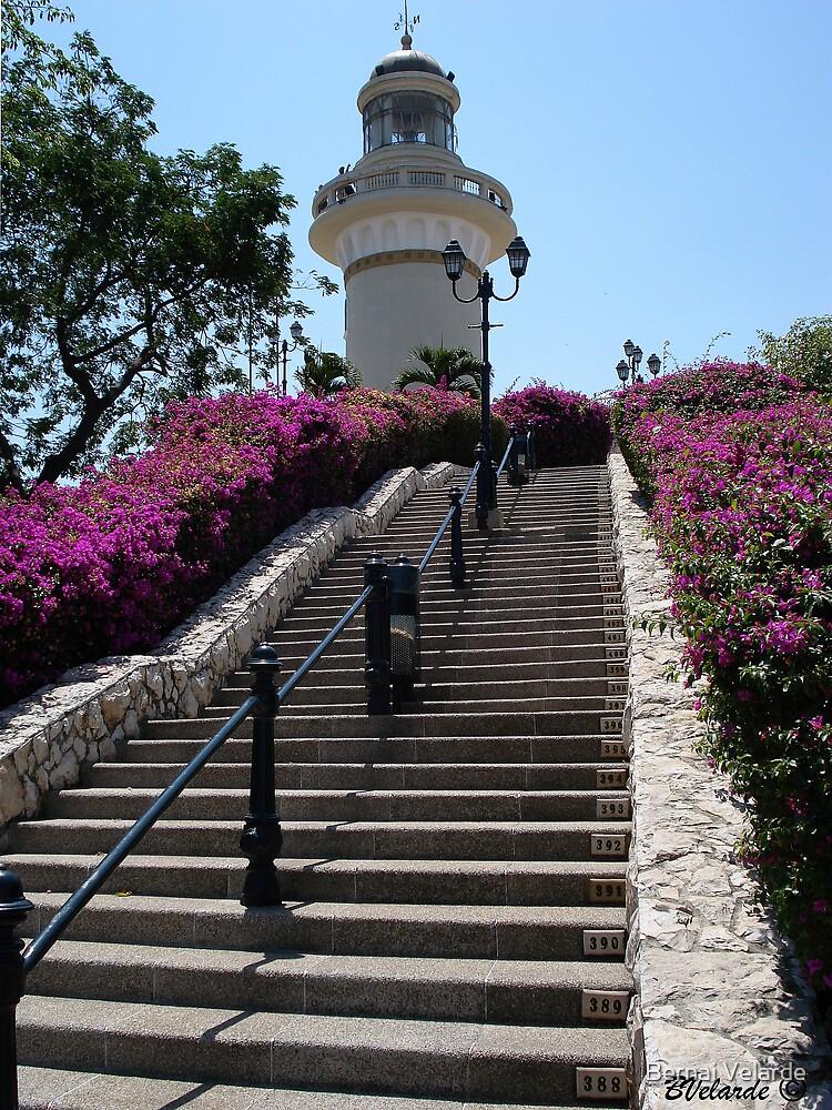 The Lighthouse - El Faro by Bernai Velarde PCE 3309