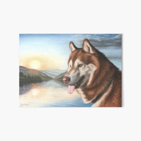 Husky Art Board Print