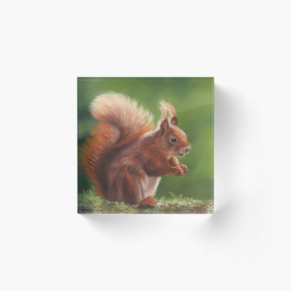 Red Squirrel Acrylic Block