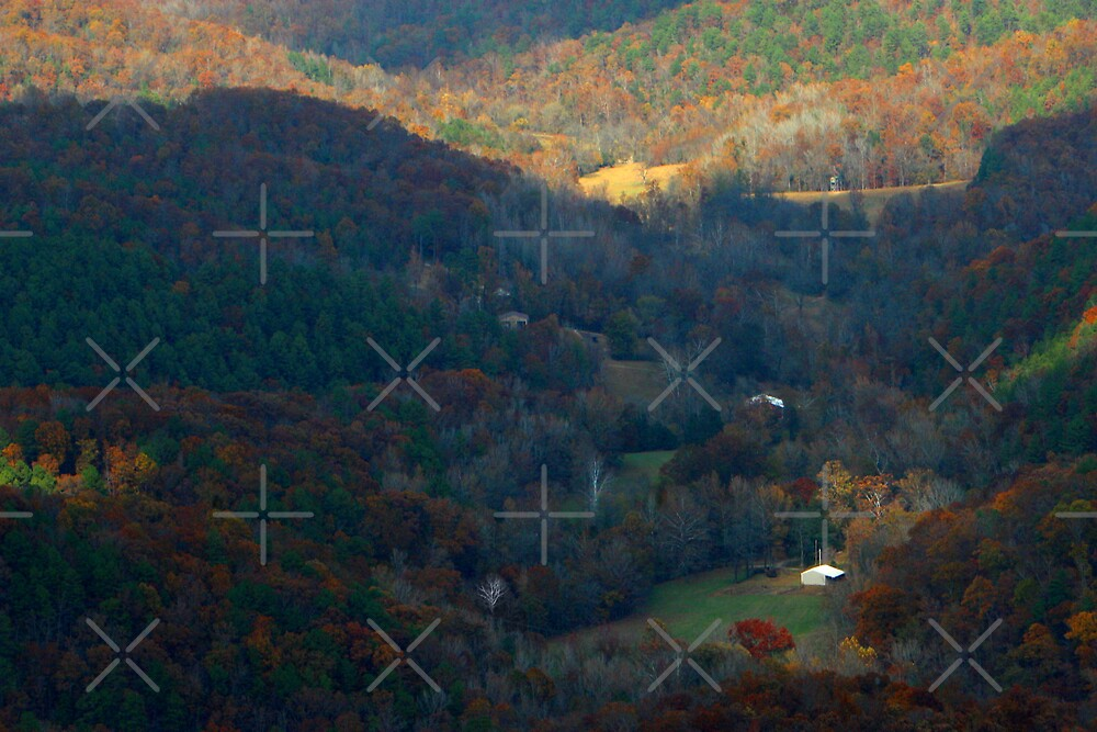 Shadows of the Valley by Lisa Putman