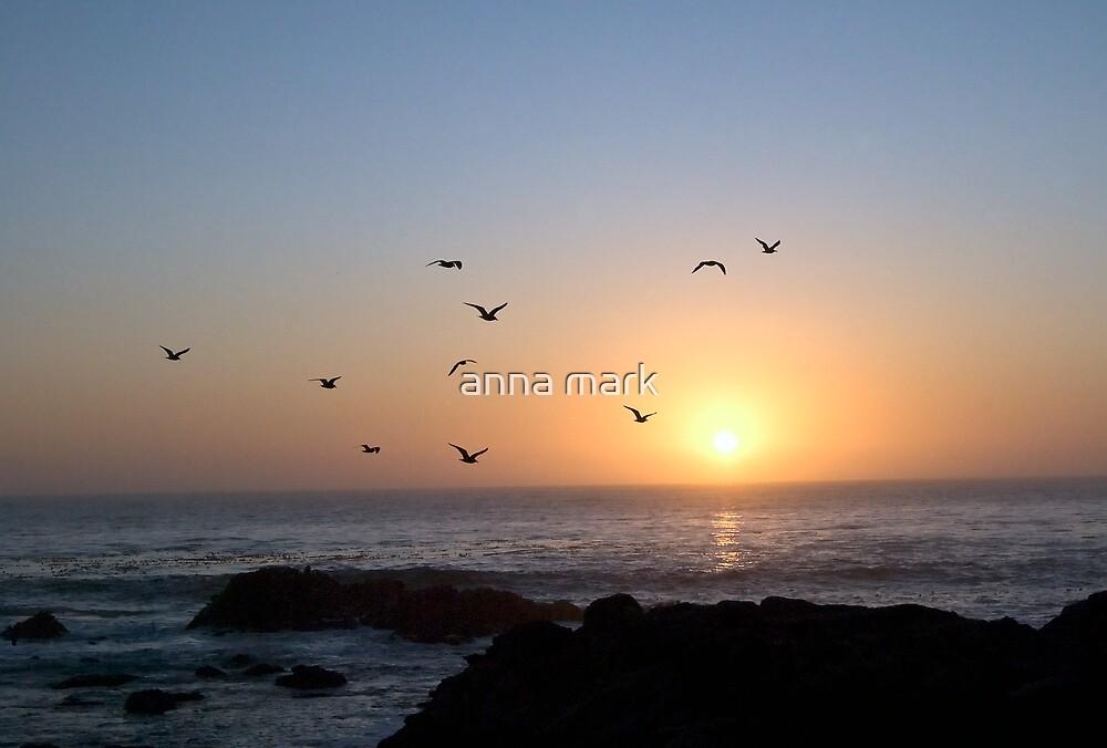 Coastal Sunset by anna mark