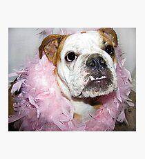 Pink boa Photographic Print