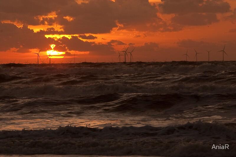 Sunset Windmill Park by AniaR
