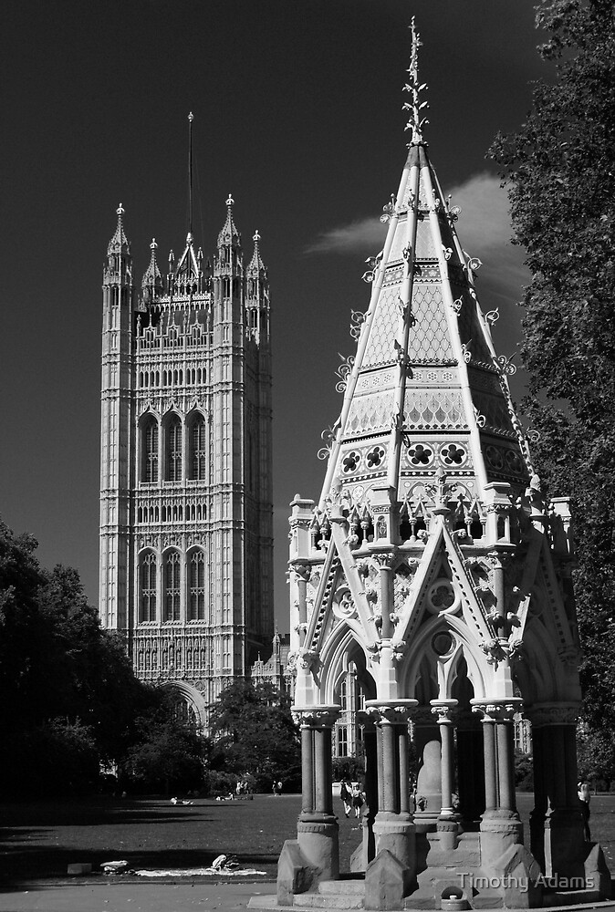 Victoria Tower by Timothy Adams