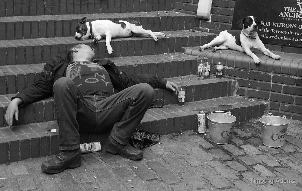 This Man's best friends by Timothy Adams