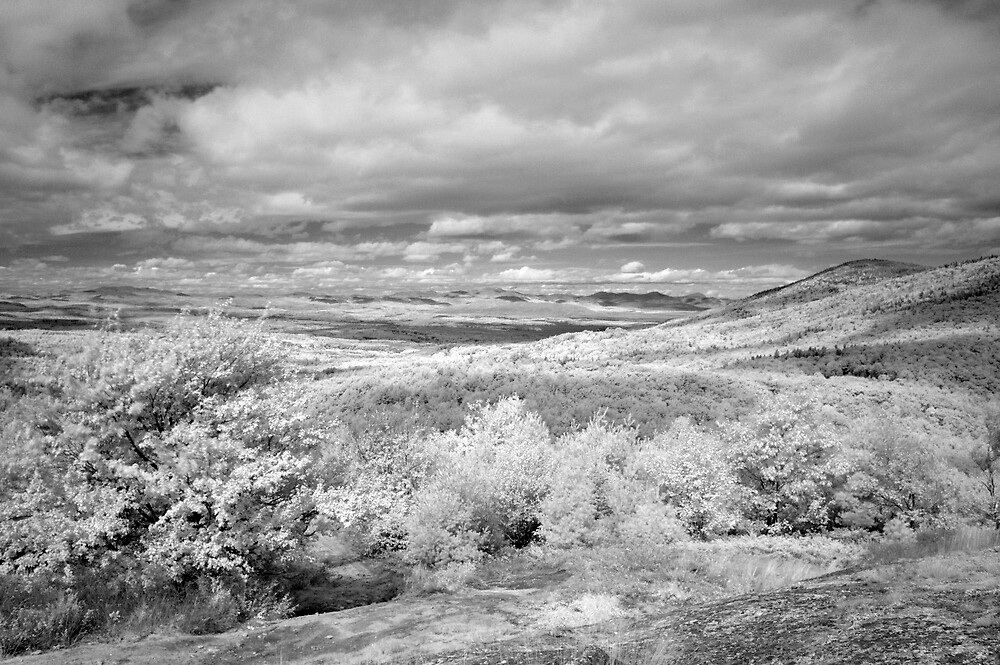 MOUNTAINS IR by DOBART