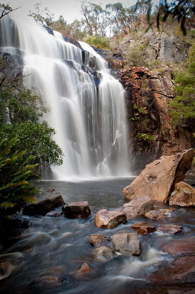 MacKenzie Falls by Rob Tremelling