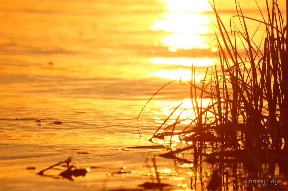 Water at Sunset by Chrissy Edye