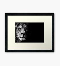 005 Framed Print
