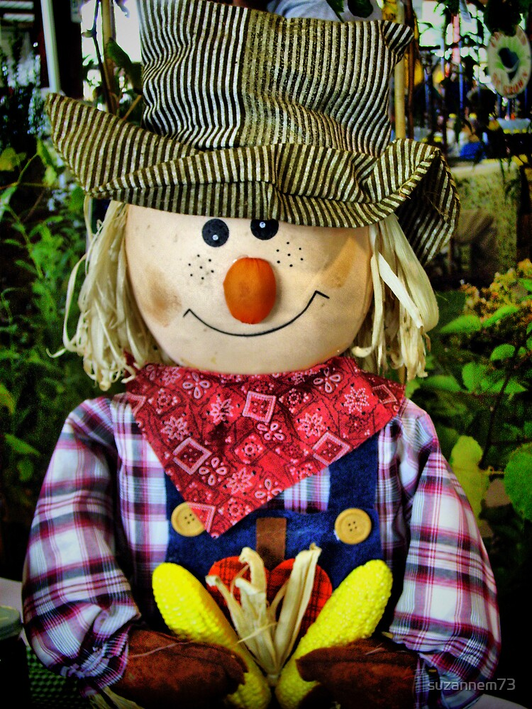 The Scarecrow by suzannem73