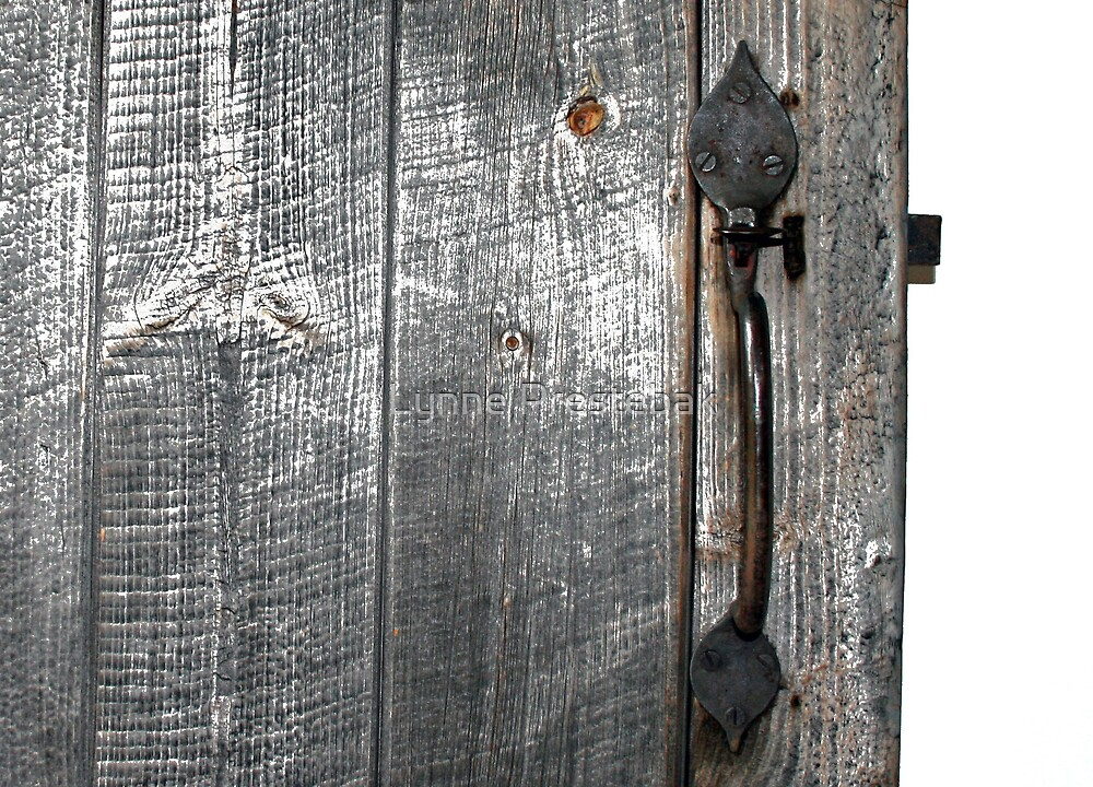 gray door by Lynne Prestebak