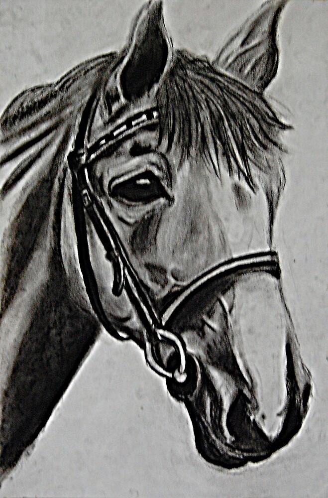 Pony by Valerie Rodriguez