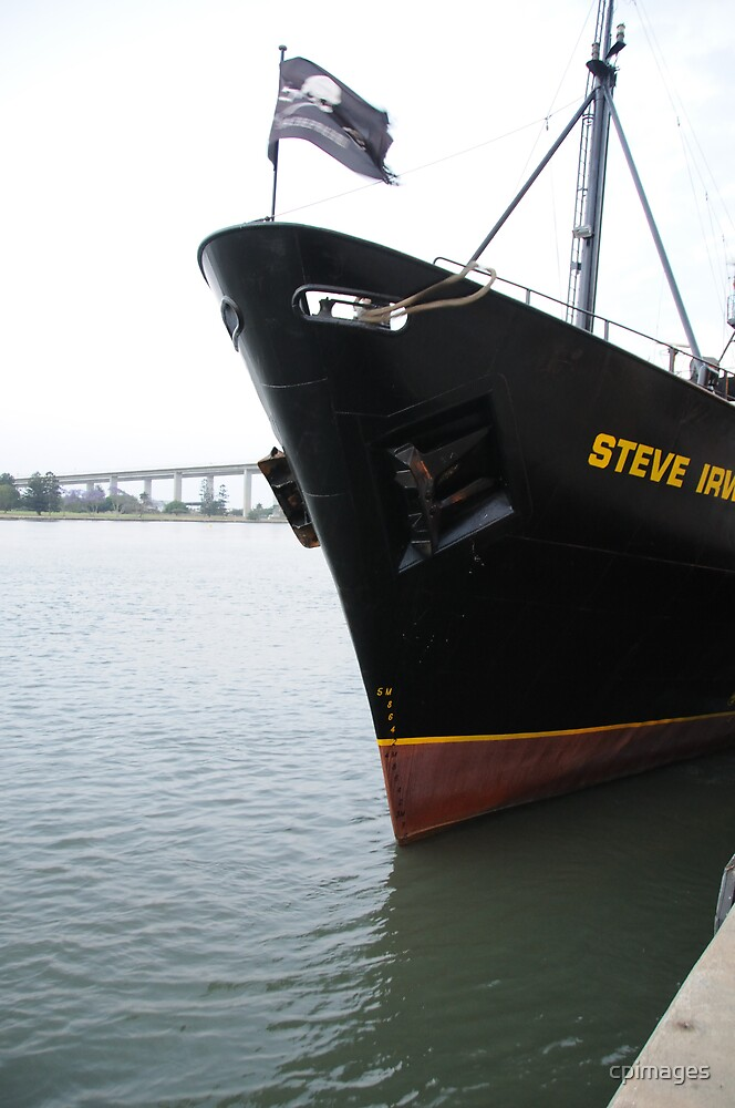 Sea Shepherd's Steve Irwin casting off by cpimages