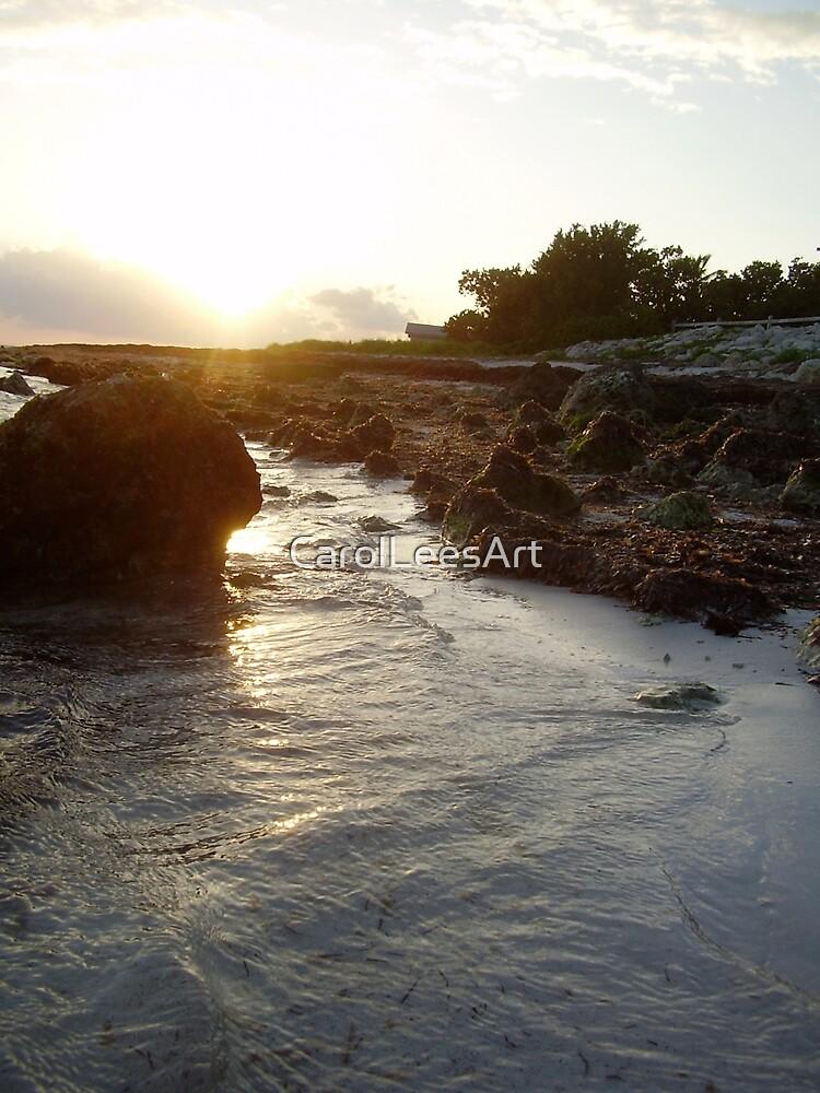 Sunset on the Keys by CarolLeesArt