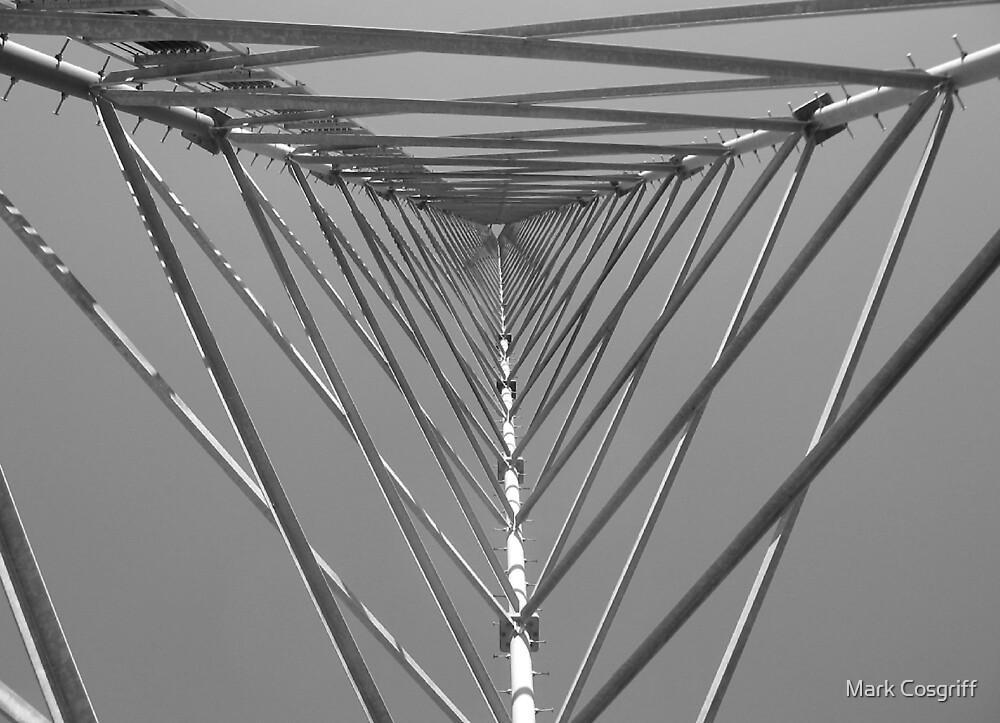 nucleus ambiguus by Mark Cosgriff