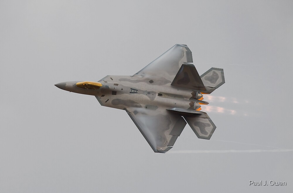USAF F-22 by Paul J. Owen