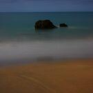 MoonLit Etty Bay by Ron  Wilson