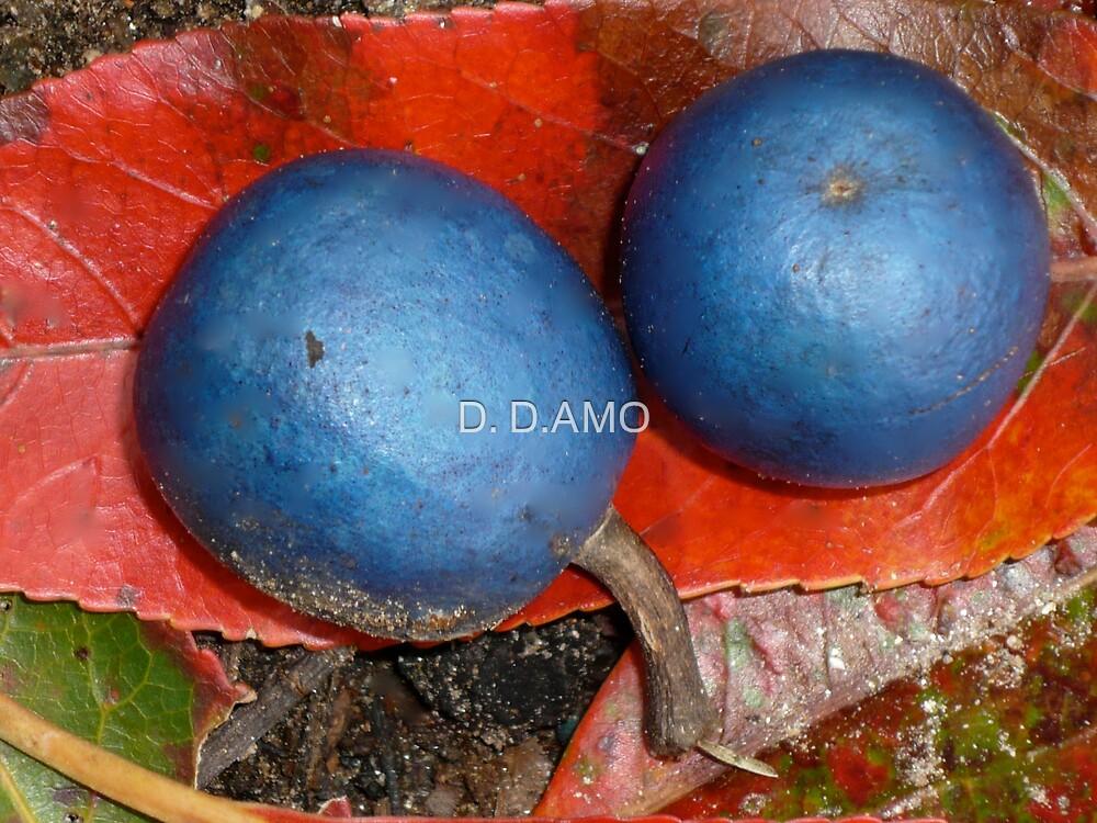 Blue blue by D. D.AMO