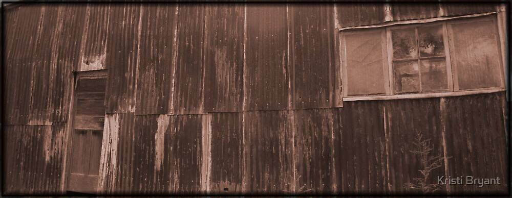 the red side of the shed by Kristi Bryant